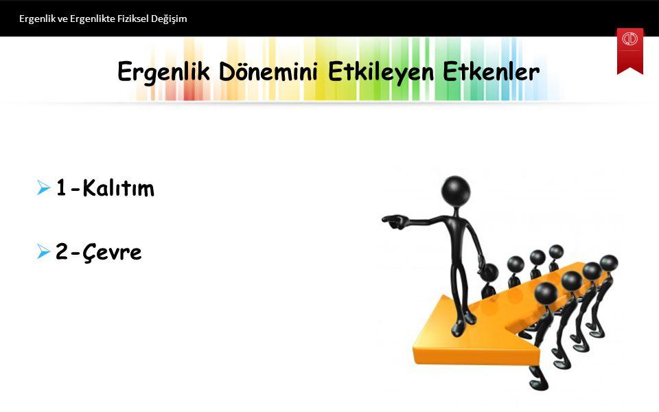 Ergenlik Dönemini Etkileyen Etkenler Ergenlik ve Ergenlikte Fiziksel Değişim  1-Kalıtım  2-Çevre