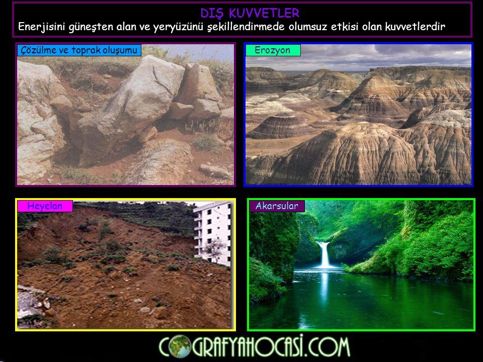 3- Kahverengi orman toprakları : Ilıman okyanus ikliminin geniş yapraklı orman bölgelerinin toprağıdır.