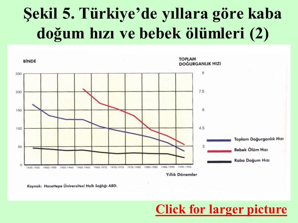 Şekil 5. Türkiye'de yıllara göre kaba doğum hızı ve bebek ölümleri (2) Click for larger picture