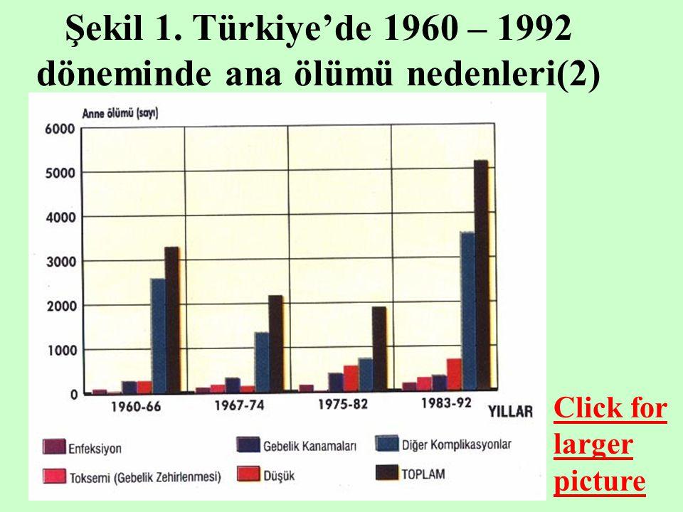 Şekil 2. Türkiye'de doğum aralıklarına göre bebek ölümleri (2) Click for larger picture