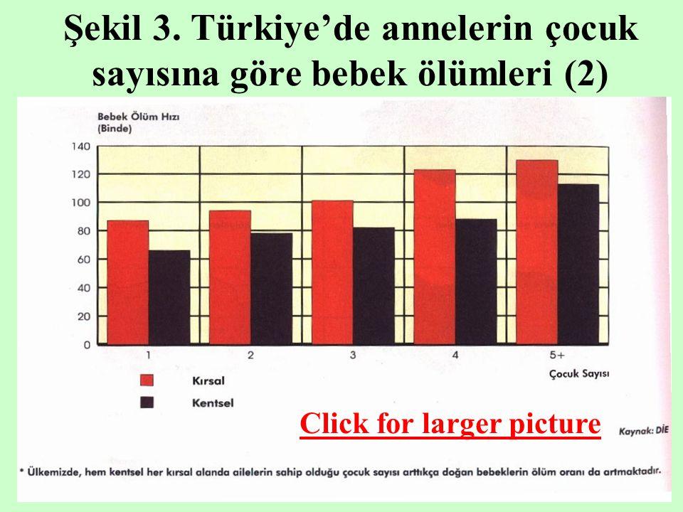 Şekil 3. Türkiye'de annelerin çocuk sayısına göre bebek ölümleri (2) Click for larger picture