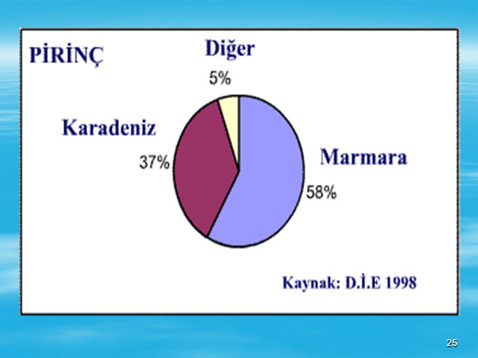 24  Üretimde en büyük paya sahip bölgemiz Marmara Bölgesidir. Başta Edirne ilimiz gelmektedir. Ayrıca Balıkesir, Çanakkale ve Bursa çevrelerinde de t