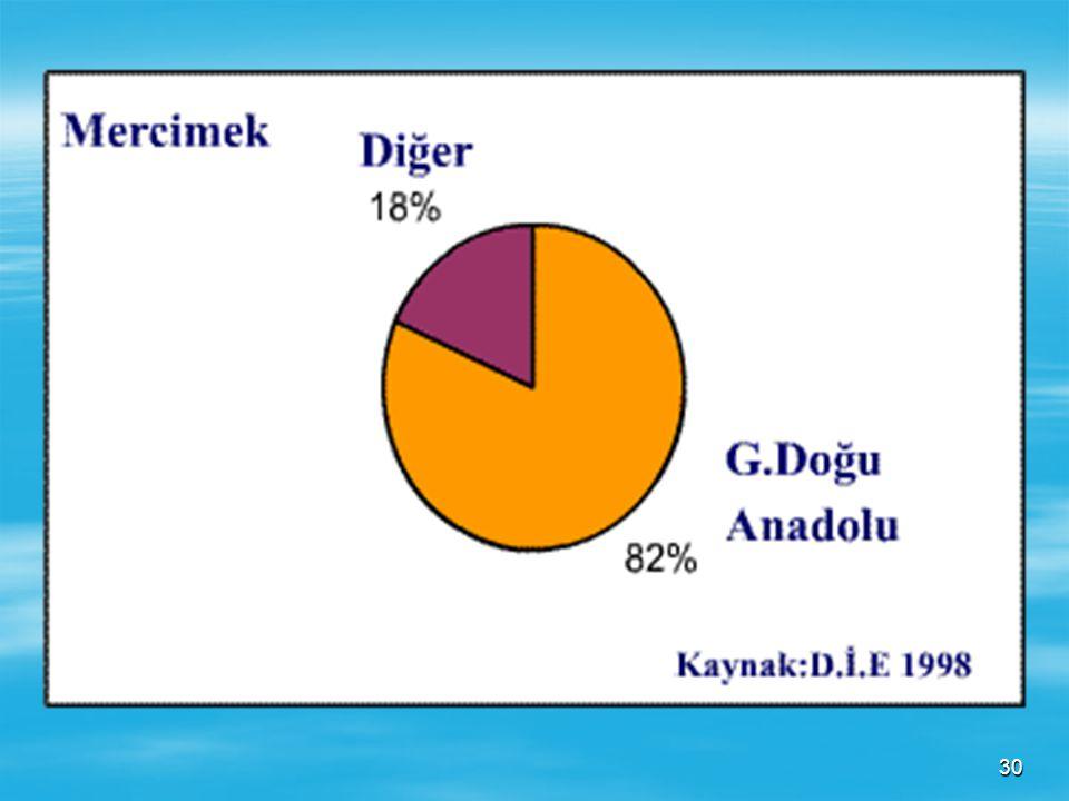 29 MERCİMEK Kuraklığa dayanıklı olduğu için en fazla tarımı G. Doğu Anadolu Bölgesinde gelişmiştir. Mercimek üretimimizin yarıdan fazlası bu bölgeden