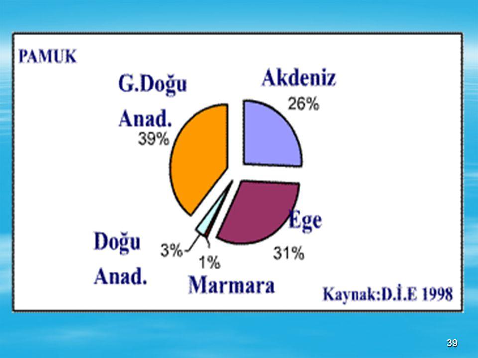 38 Harita : Türkiye'de pamuk üretiminin yoğun olarak yapıldığı yerler