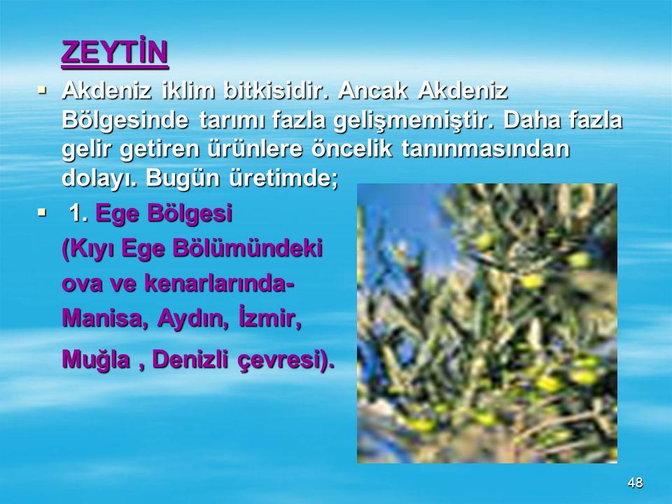 47 ***Son yıllarda Akdeniz ve Ege Bölgelerinde ayçiçeği tarımı hızla gelişme göstermektedir. Sebebi pamuk bitkisine göre daha az masraflı olmasıdır. *