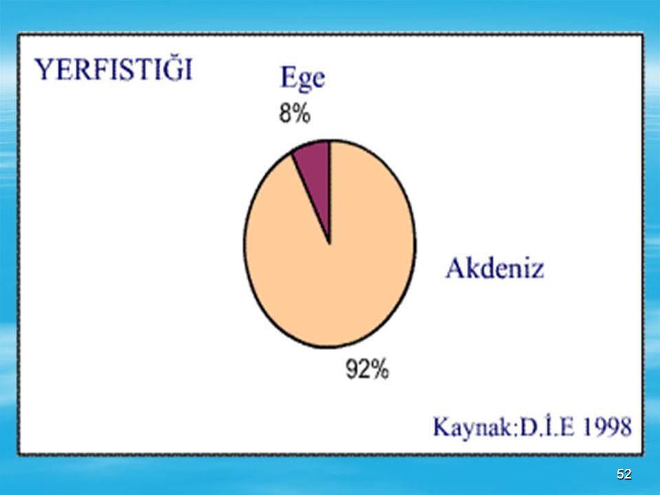 51 YER FISTIĞI YER FISTIĞI  Akdeniz iklim şartlarında iyi yetişmektedir. En fazla tarımı Akdeniz bölgesinde Adana çevresinde gelişmiştir(%91). Ayrıca