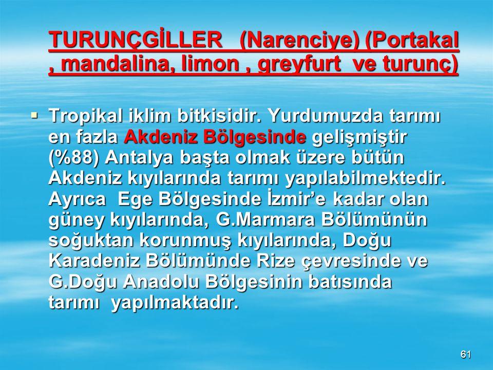 60 ANTEP FISTIĞI  En iyi yetişme şartlarını G.Doğu Anadolu Bölgesinde bulmuştur (% 90). Başta Ş.Urfa ve G.Antep gelir. Ayrıca Akdeniz ve Ege Bölgeler