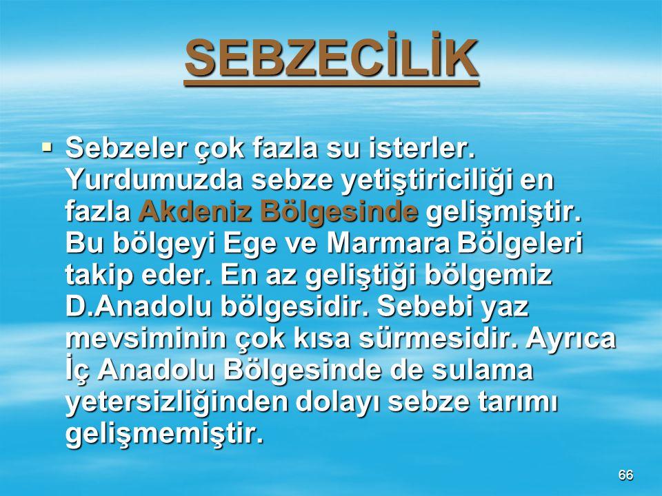 65 BADEM BADEM  Kıraç arazilerde yetişebilmektedir. Bütün bölgelerimizde tarımı yapılabilmektedir. En fazla İç Anadolu Bölgesinde Niğde –Nevşehir çev