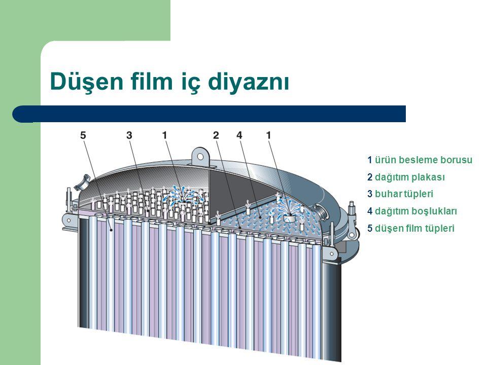 Düşen film iç diyaznı 1 ürün besleme borusu 2 dağıtım plakası 3 buhar tüpleri 4 dağıtım boşlukları 5 düşen film tüpleri