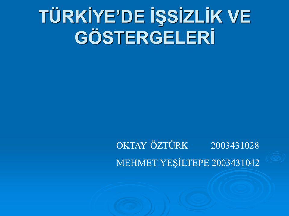 TÜRKİYE'DE İŞSİZLİK VE GÖSTERGELERİ OKTAY ÖZTÜRK 2003431028 MEHMET YEŞİLTEPE 2003431042