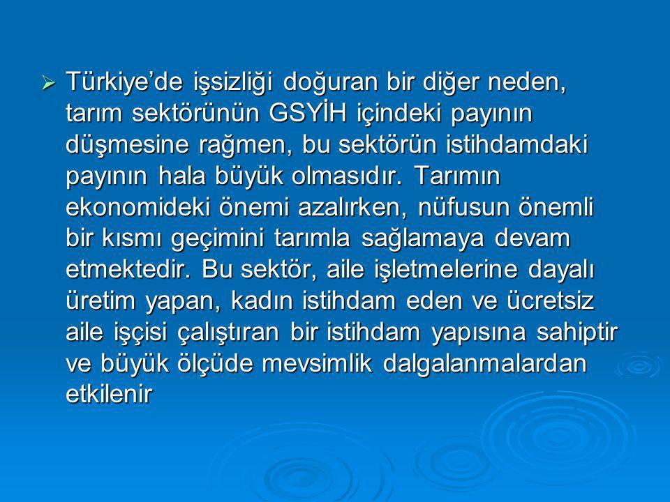  Türkiye'de işsizliği doğuran bir diğer neden, tarım sektörünün GSYİH içindeki payının düşmesine rağmen, bu sektörün istihdamdaki payının hala büyük