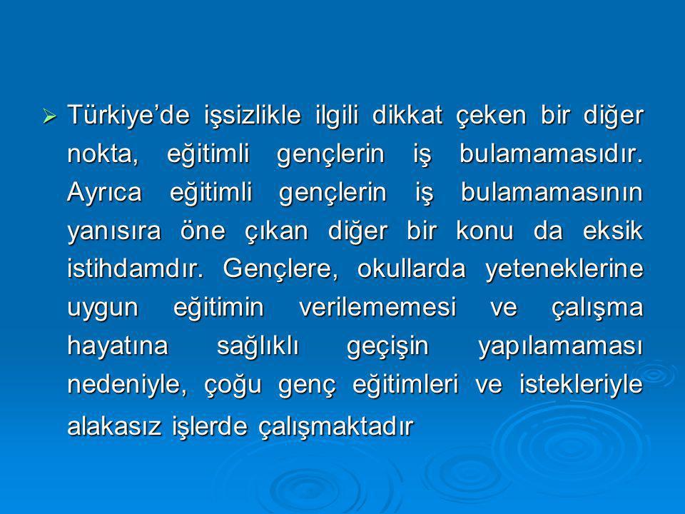  Türkiye'de işsizlikle ilgili dikkat çeken bir diğer nokta, eğitimli gençlerin iş bulamamasıdır. Ayrıca eğitimli gençlerin iş bulamamasının yanısıra
