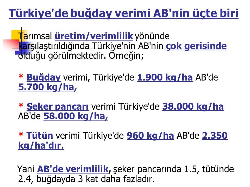 Türkiye de buğday verimi AB nin üçte biri Tarımsal üretim/verimlilik yönünde karşılaştırıldığında Türkiye nin AB nin çok gerisinde olduğu görülmektedir.