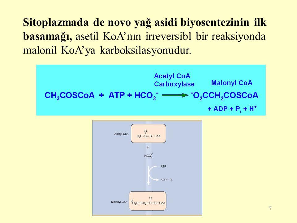7 Sitoplazmada de novo yağ asidi biyosentezinin ilk basamağı, asetil KoA'nın irreversibl bir reaksiyonda malonil KoA'ya karboksilasyonudur.