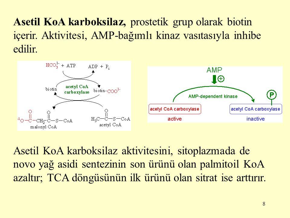 9 Sitoplazmada de novo yağ asidi biyosentezinin ilk basamağında oluşan malonil KoA, yağ asitlerinin β- oksidasyon denen bir yolda yıkılmak üzere mitokondriye girmesinde görevli enzim olan karnitin açiltransferaz I'i inhibe eder.