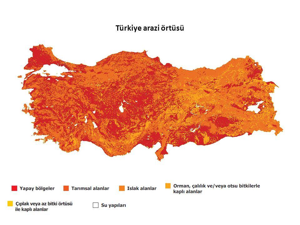 Türkiye arazi örtüsü