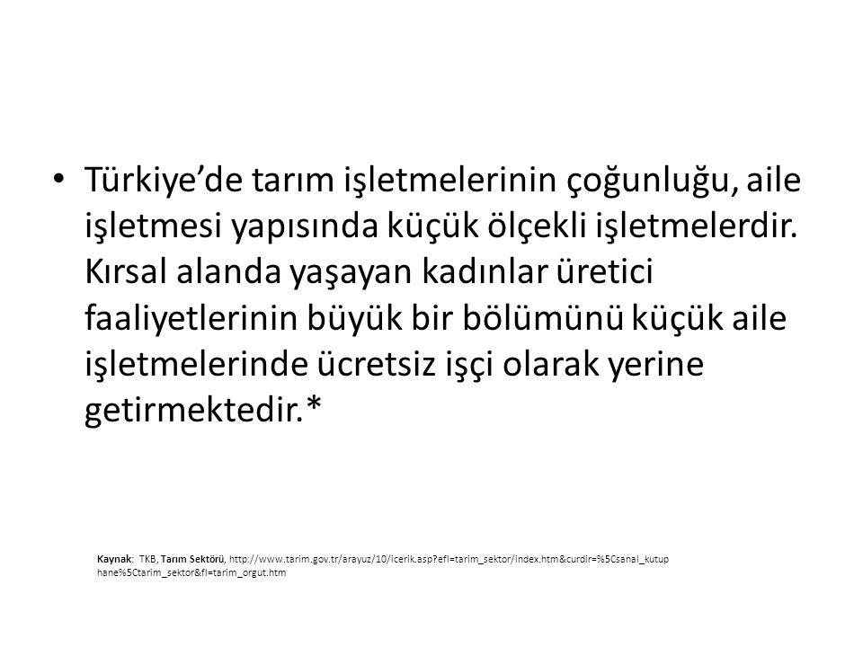 Türkiye'de tarım işletmelerinin çoğunluğu, aile işletmesi yapısında küçük ölçekli işletmelerdir. Kırsal alanda yaşayan kadınlar üretici faaliyetlerini
