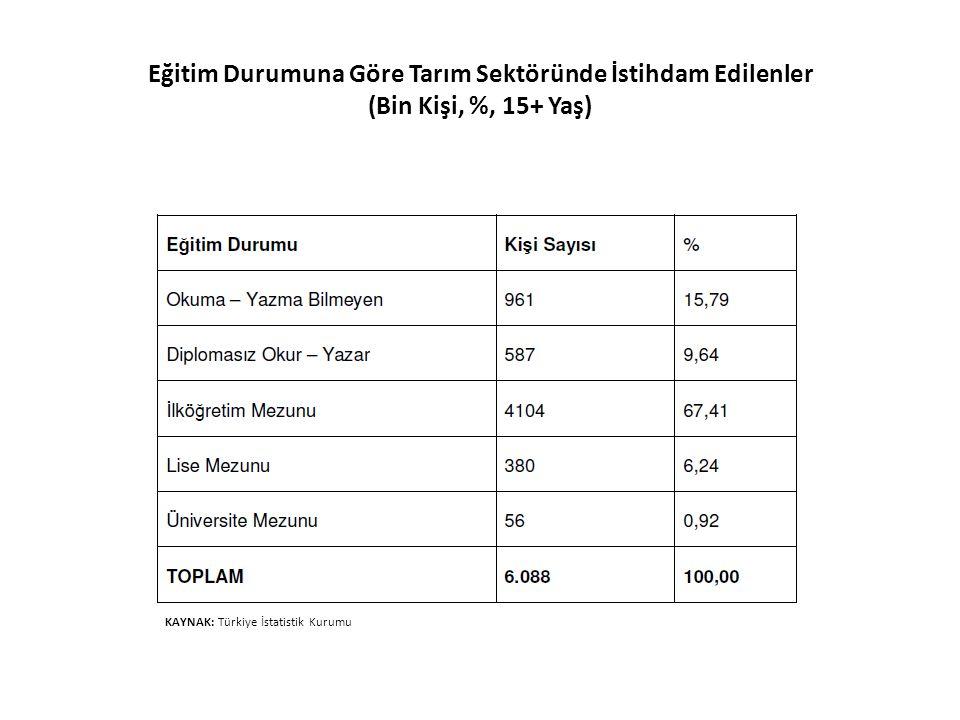 Eğitim Durumuna Göre Tarım Sektöründe İstihdam Edilenler (Bin Kişi, %, 15+ Yaş) KAYNAK: Türkiye İstatistik Kurumu