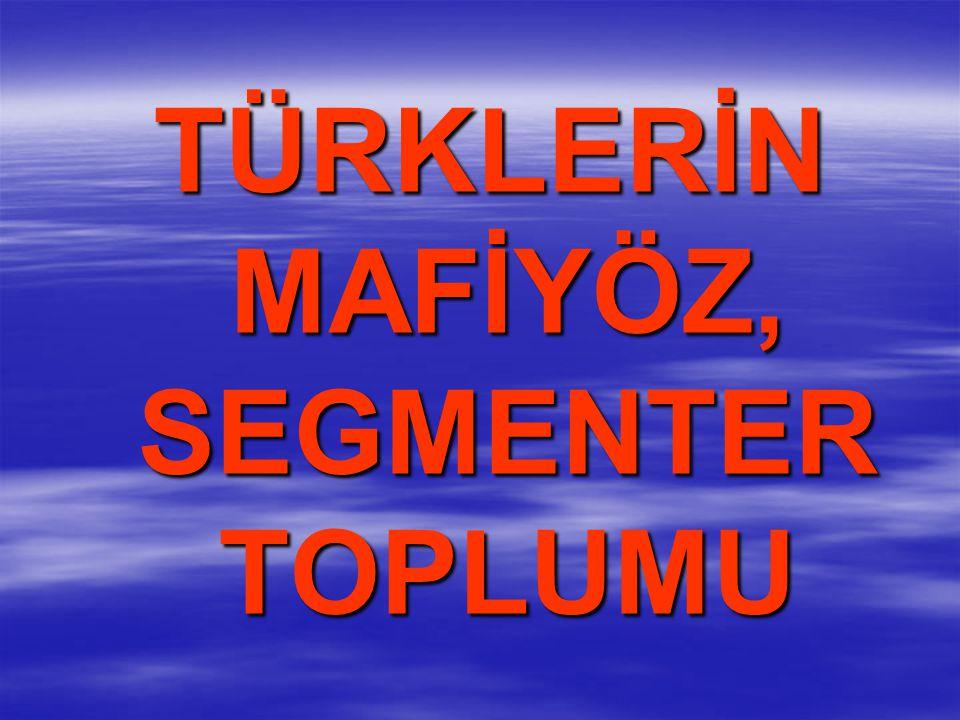 TÜRKLERİN MAFİYÖZ, SEGMENTER TOPLUMU