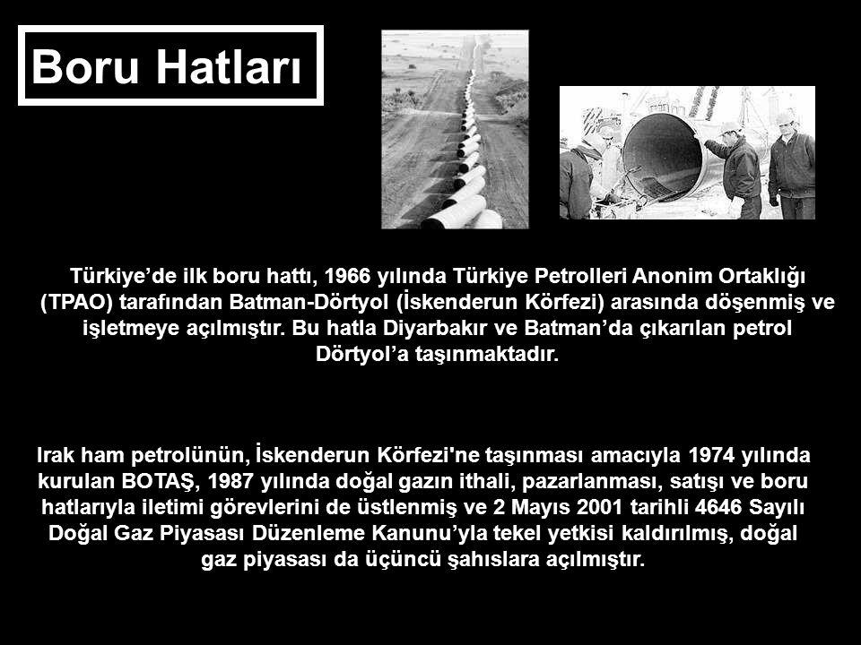 Boru Hatları Türkiye'de ilk boru hattı, 1966 yılında Türkiye Petrolleri Anonim Ortaklığı (TPAO) tarafından Batman-Dörtyol (İskenderun Körfezi) arasınd