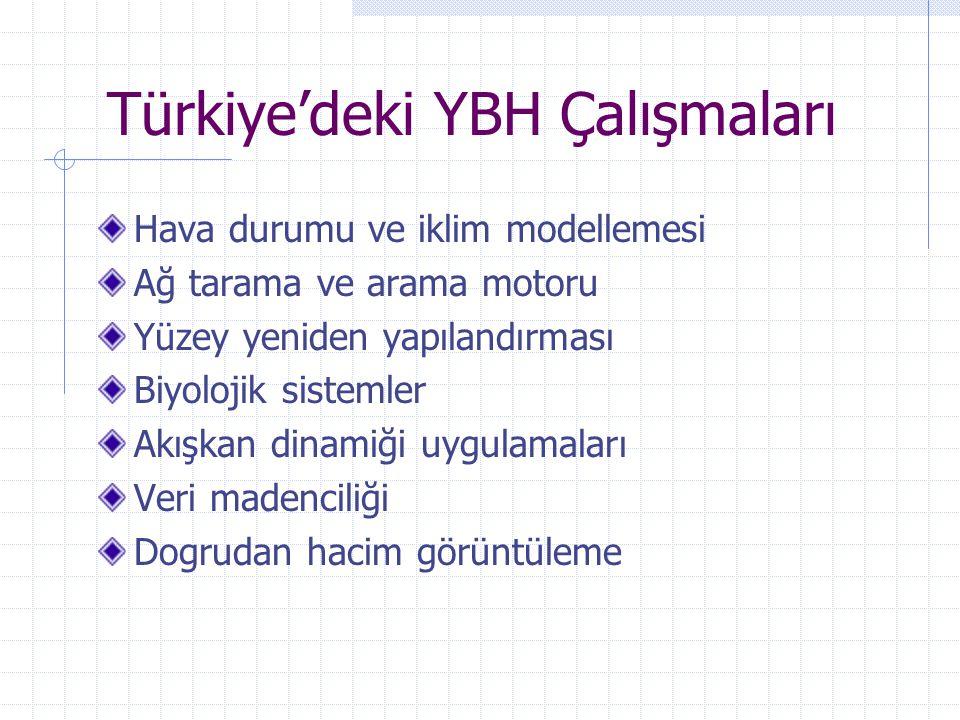 Türkiye'deki YBH Çalışmaları Hava durumu ve iklim modellemesi Ağ tarama ve arama motoru Yüzey yeniden yapılandırması Biyolojik sistemler Akışkan dinam