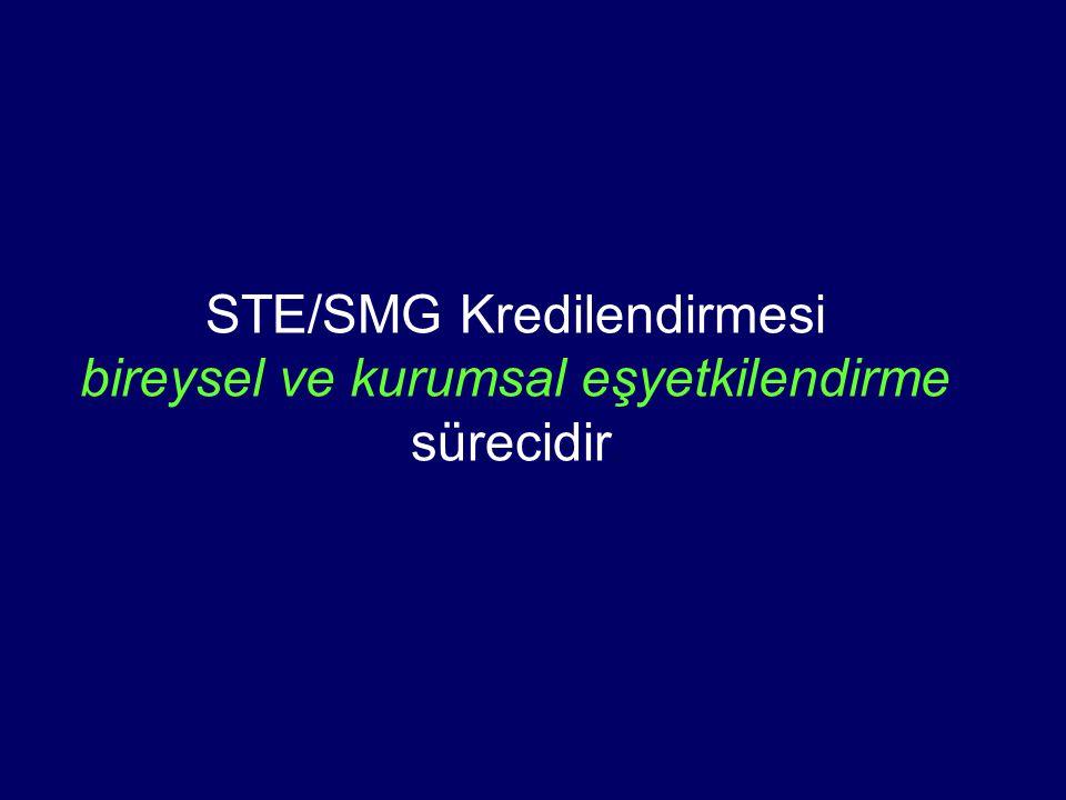 STE/SMG Kredilendirmesi bireysel ve kurumsal eşyetkilendirme sürecidir.