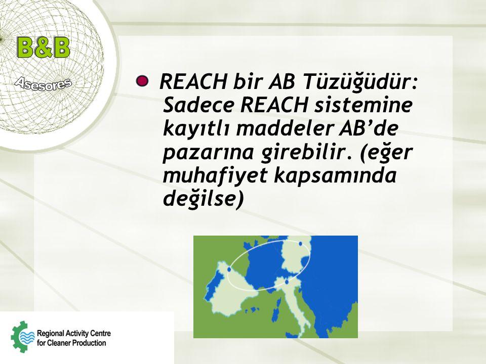 REACH bir AB Tüzüğüdür: Sadece REACH sistemine kayıtlı maddeler AB'de pazarına girebilir. (eğer muhafiyet kapsamında değilse)
