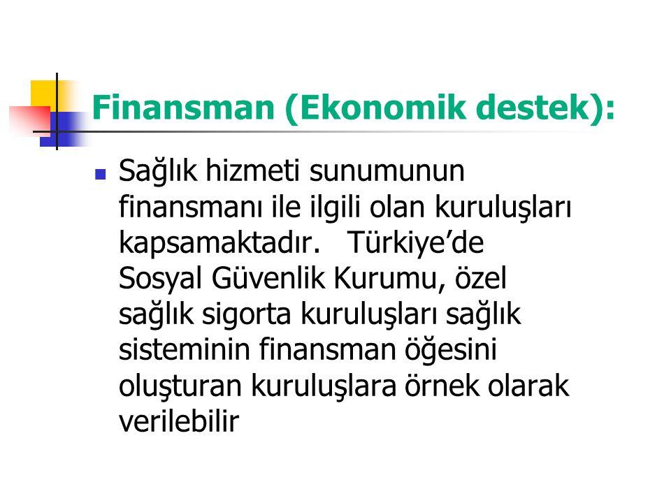 Finansman (Ekonomik destek): Sağlık hizmeti sunumunun finansmanı ile ilgili olan kuruluşları kapsamaktadır. Türkiye'de Sosyal Güvenlik Kurumu, özel sa