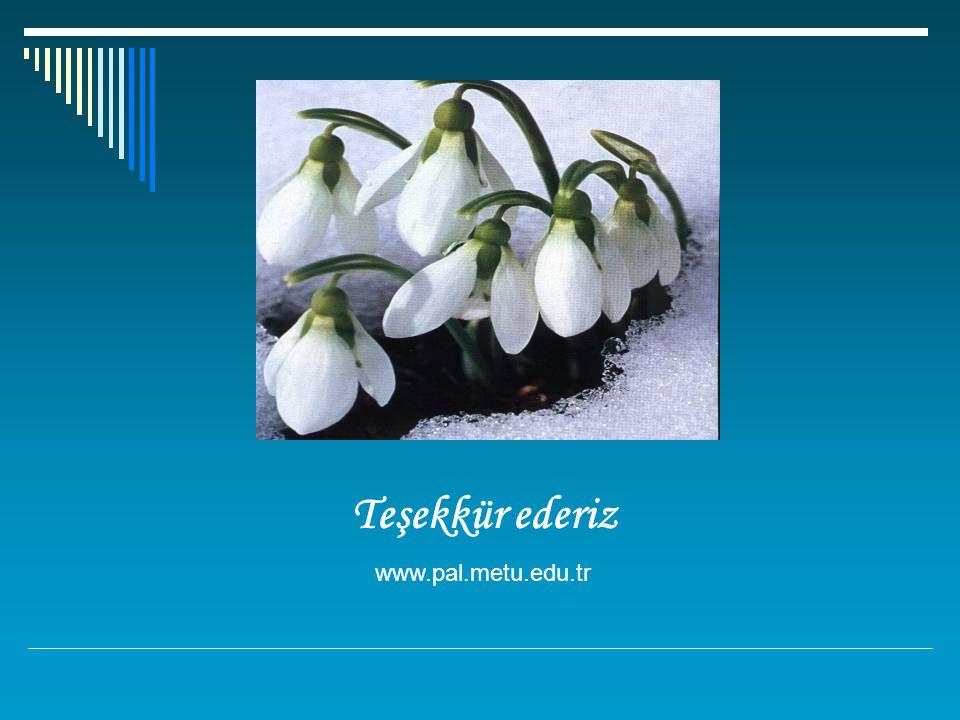 Teşekkür ederiz www.pal.metu.edu.tr