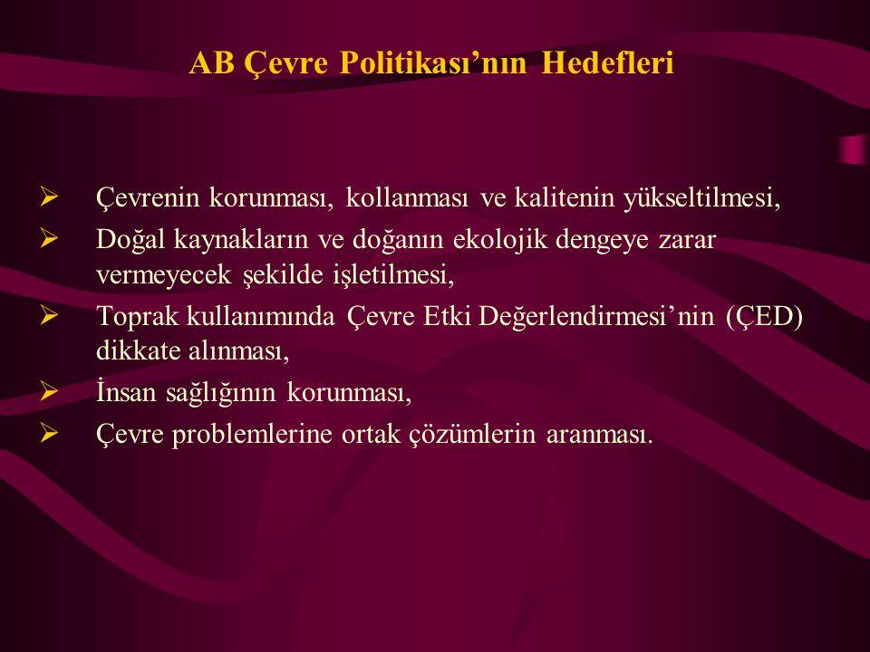 Sonuçlar Çevre başlığı, müzakerelerde Türkiye'nin en çok zorlanacağı başlılardan biridir.