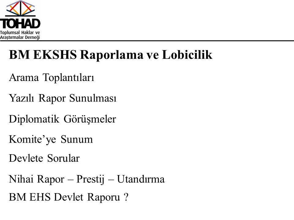 BM EKSHS Raporlama ve Lobicilik Diplomatik Görüşmeler Yazılı Rapor Sunulması Komite'ye Sunum Nihai Rapor – Prestij – Utandırma Devlete Sorular BM EHS Devlet Raporu .
