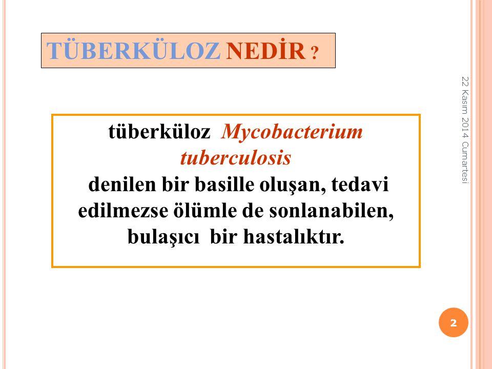 TÜBERKÜLOZ NEDİR ? tüberküloz Mycobacterium tuberculosis denilen bir basille oluşan, tedavi edilmezse ölümle de sonlanabilen, bulaşıcı bir hastalıktır