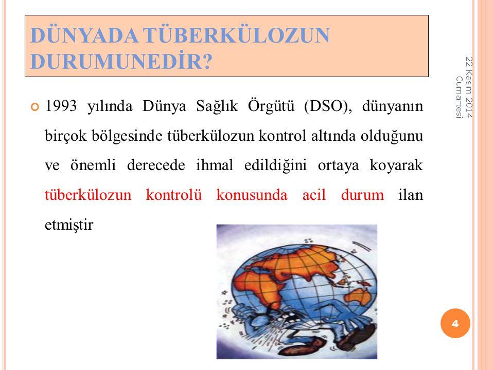 1993 yılında Dünya Sağlık Örgütü (DSO), dünyanın birçok bölgesinde tüberkülozun kontrol altında olduğunu ve önemli derecede ihmal edildiğini ortaya ko