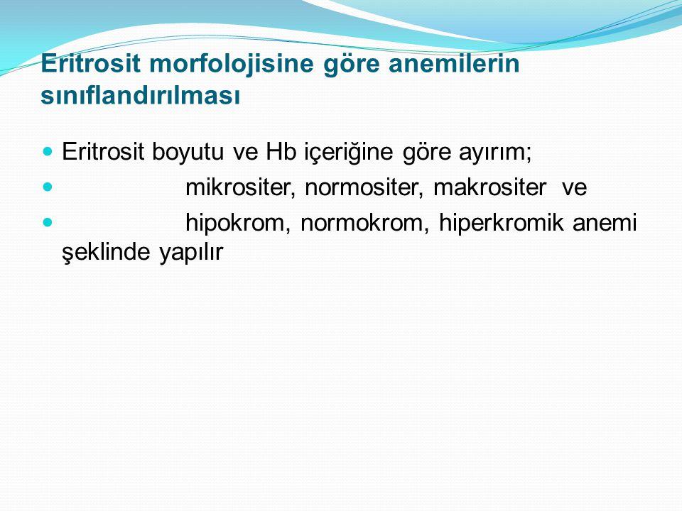Eritrosit morfolojisine göre anemilerin sınıflandırılması Eritrosit boyutu ve Hb içeriğine göre ayırım; mikrositer, normositer, makrositer ve hipokrom, normokrom, hiperkromik anemi şeklinde yapılır
