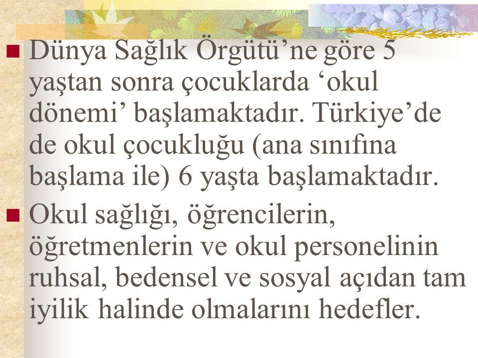 Türkiye'de okul sağlığı ile ilgili uygulamalardan Milli Eğitim Bakanlığı ve Sağlık Bakanlığı sorumludur.
