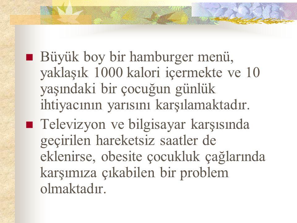 Büyük boy bir hamburger menü, yaklaşık 1000 kalori içermekte ve 10 yaşındaki bir çocuğun günlük ihtiyacının yarısını karşılamaktadır. Televizyon ve bi