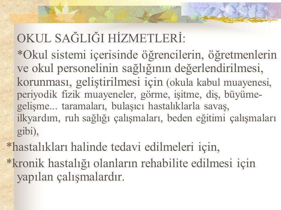 7-Kazalardan korunma 8-Sporun yararları 9-Sigaranın zararları ( Türkiye'de öğretmenlerin % 47.5 i, ortaokul öğrencilerinin % 6-10 u, lise öğrencilerinin % 25-40 ı sigara içmektedir ) 10- Çevre temizliği ve bakımı 11-Temiz hava ve güneşin yararları 12-Sağlıklı giyinme 13-Bölgesel hastalıklar: Guatr, sıtma..