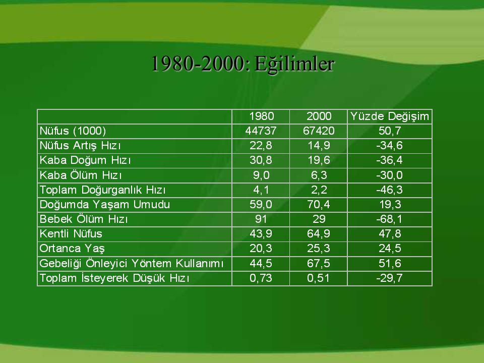 1980-2000: Eğilimler