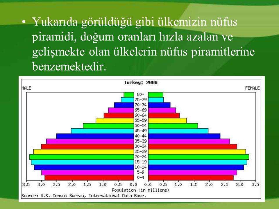 Yukarıda görüldüğü gibi ülkemizin nüfus piramidi, doğum oranları hızla azalan ve gelişmekte olan ülkelerin nüfus piramitlerine benzemektedir.