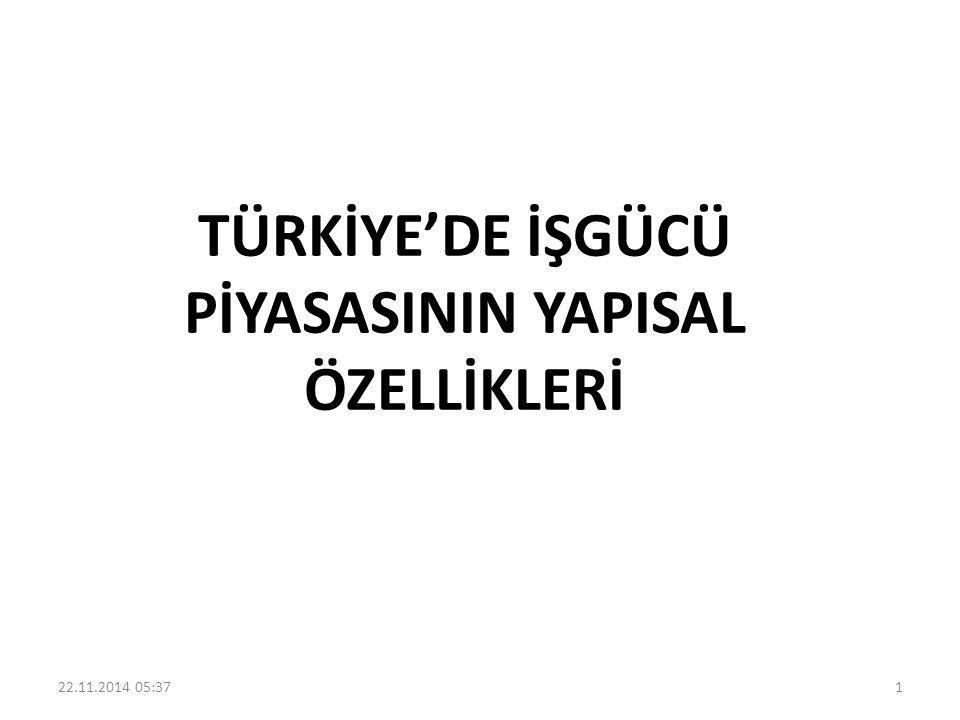 Türkiye'de işgücü piyasası, hızlı nüfus artışına bağlı olarak ortaya çıkan güçlü işgücü arzı, düşük istihdam oranları, azalan işgücüne katılım, yüksek işsizlik oranları, istihdamın yaygın olarak küçük ölçekli işletmelerde olması ve farklı ücret düzeyleri ile karakterize edilmektedir 22.11.2014 05:392