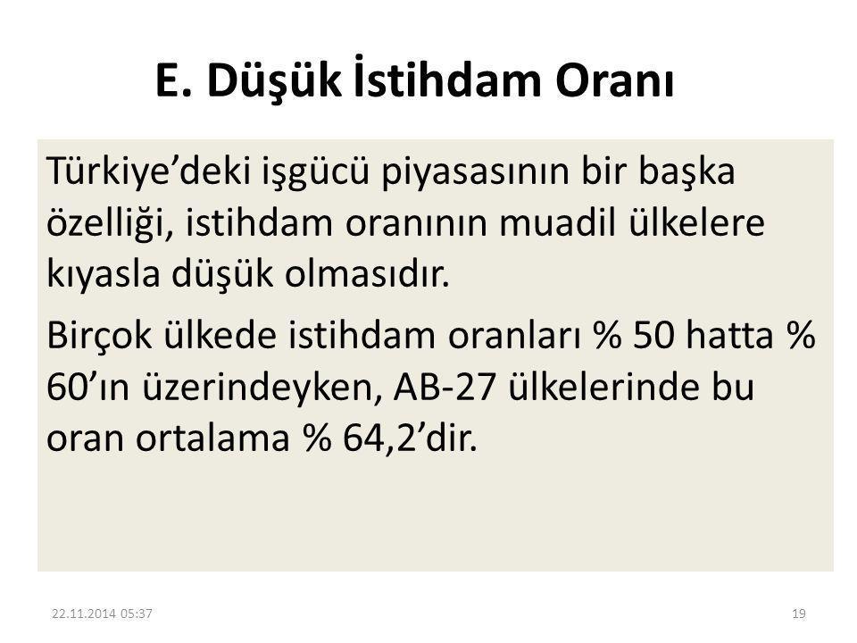 E. Düşük İstihdam Oranı Türkiye'deki işgücü piyasasının bir başka özelliği, istihdam oranının muadil ülkelere kıyasla düşük olmasıdır. Birçok ülkede i