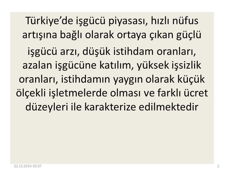 Türkiye işgücü piyasasının, bu karakteristik özelliklerinin ardında bazı önemli yapısal nedenler olduğu görülmektedir.