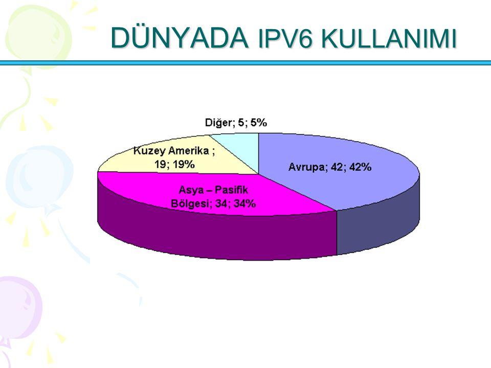 DÜNYADA IPV6 KULLANIMI DÜNYADA IPV6 KULLANIMI