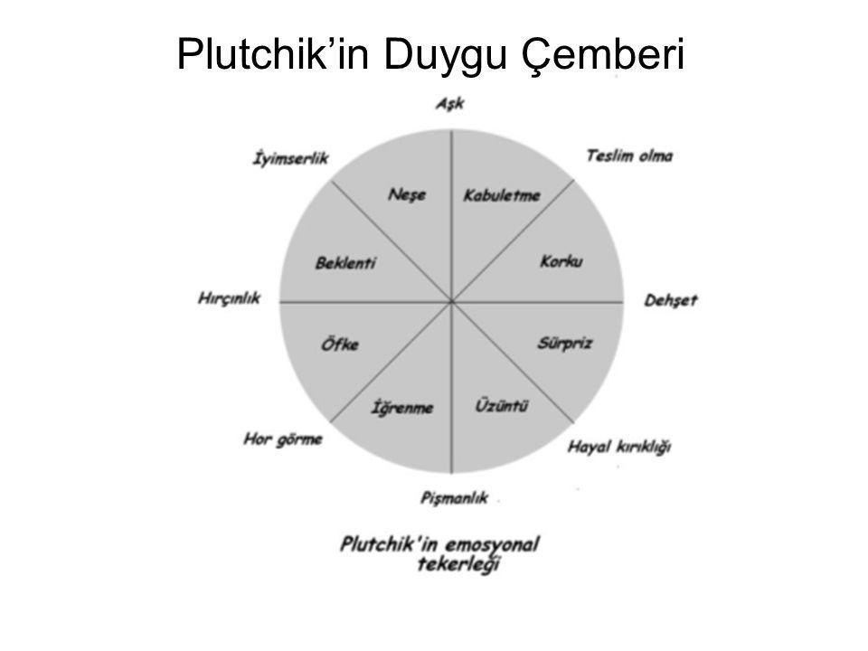 Plutchik'in Duygu Çemberi