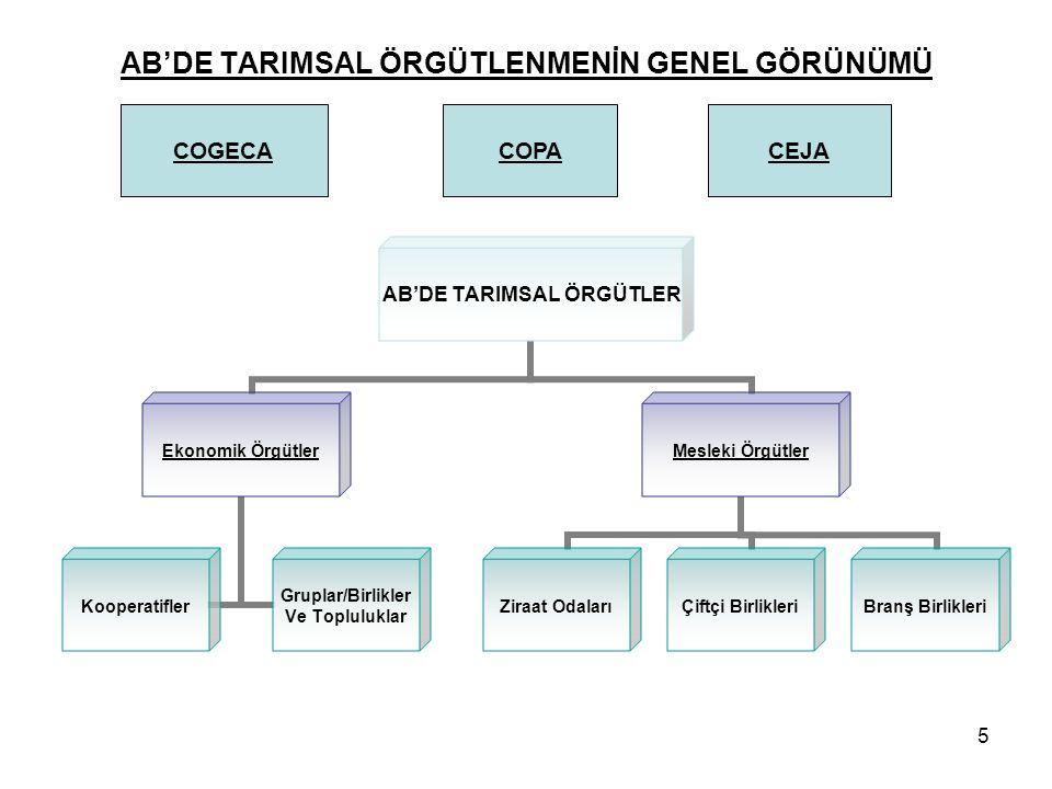 5 AB'DE TARIMSAL ÖRGÜTLENMENİN GENEL GÖRÜNÜMÜ AB'DE TARIMSAL ÖRGÜTLER Ekonomik Örgütler Kooperatifler Gruplar/Birlikler Ve Topluluklar Mesleki Örgütle
