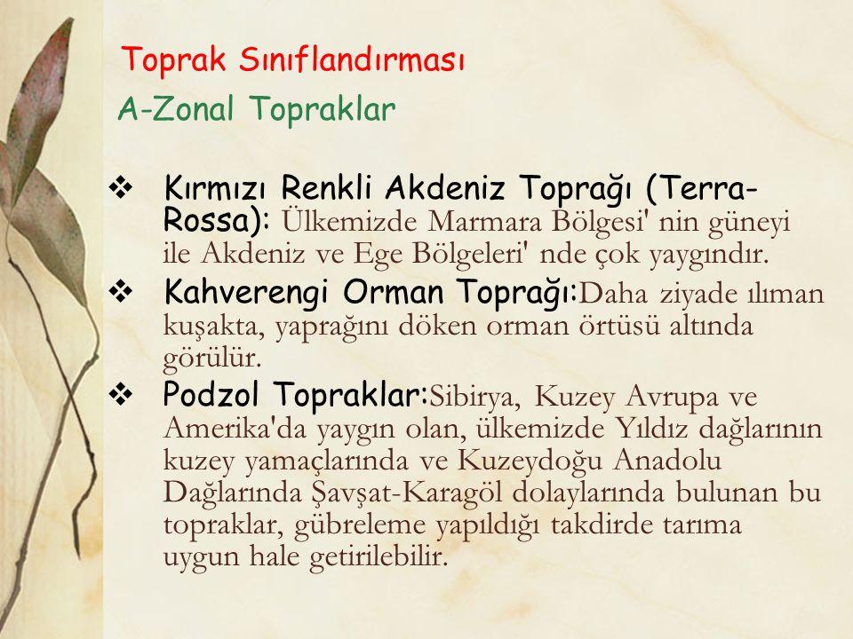 Toprak Sınıflandırması A-Zonal Topraklar  Kırmızı Renkli Akdeniz Toprağı (Terra- Rossa): Ülkemizde Marmara Bölgesi nin güneyi ile Akdeniz ve Ege Bölgeleri nde çok yaygındır.