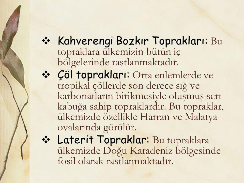  Kahverengi Bozkır Toprakları: Bu topraklara ülkemizin bütün iç bölgelerinde rastlanmaktadır.