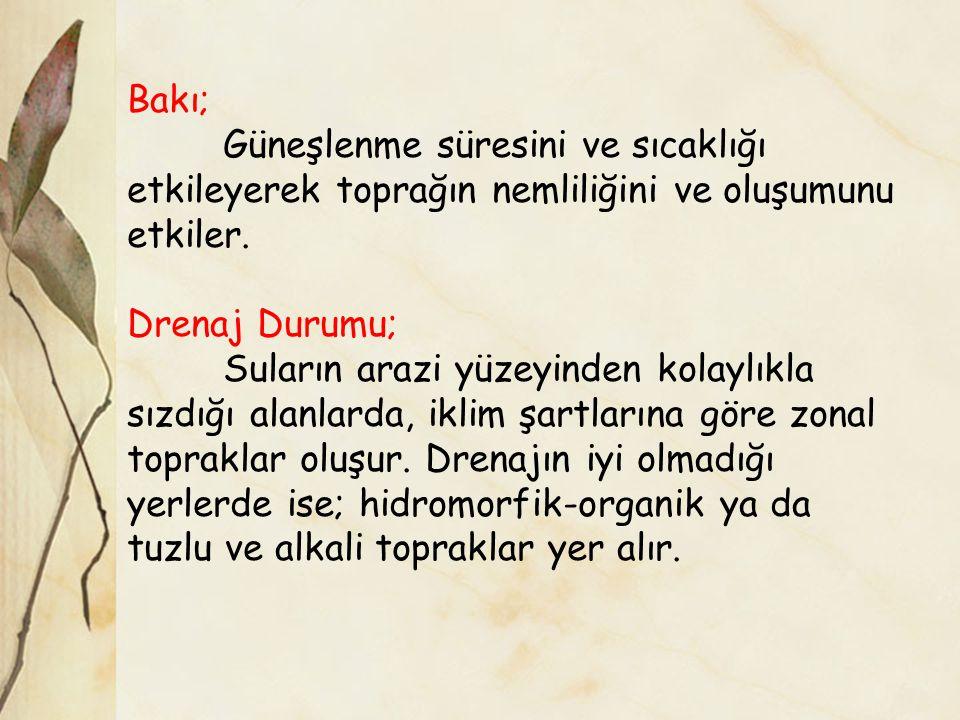 Kaynakça BAHTİYAR, M.,1979.Toprak Prof. Dr. Kadir DİRİK Ders Notları Mater, B., 2004.