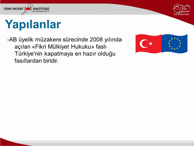 -AB üyelik müzakere sürecinde 2008 yılında açılan «Fikri Mülkiyet Hukuku» faslı Türkiye nin kapatmaya en hazır olduğu fasıllardan biridir.