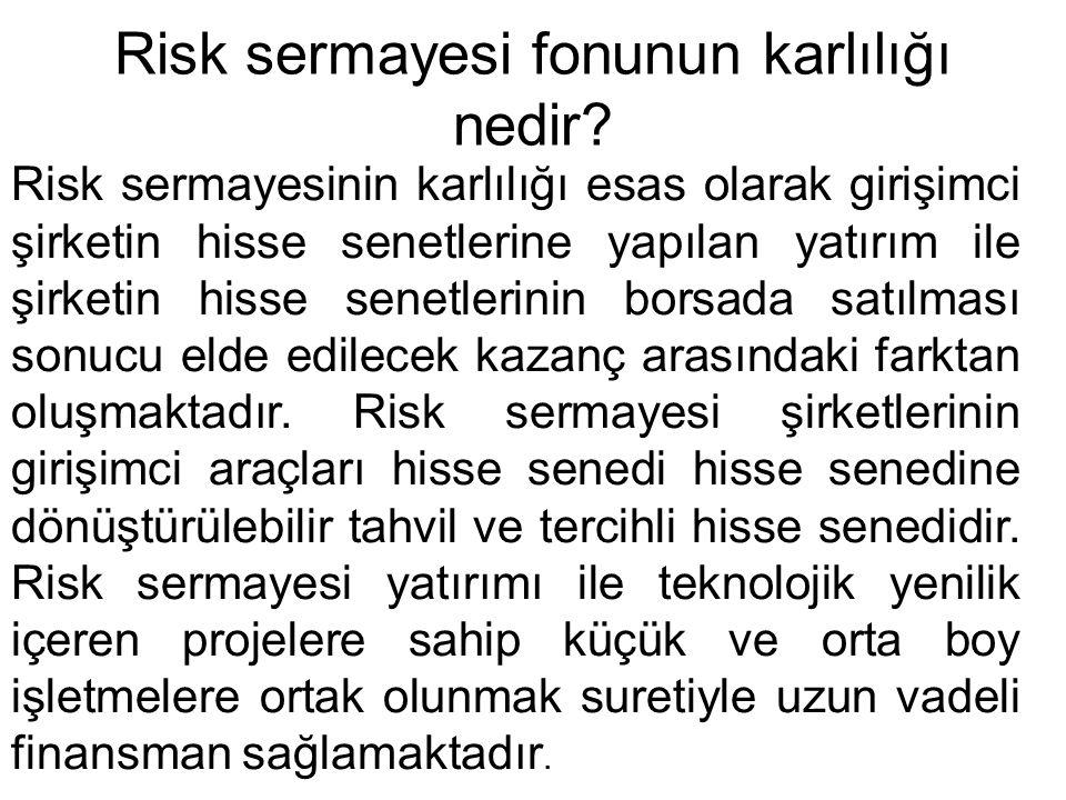 Risk sermayesi fonunun karlılığı nedir? Risk sermayesinin karlılığı esas olarak girişimci şirketin hisse senetlerine yapılan yatırım ile şirketin hiss